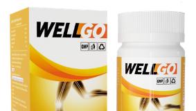 WellGo - ราคา - รีวิว - ขายที่ไหน - คือ - pantip - ดีไหม